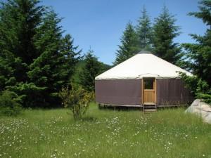 Stillpoint Yurt in the woods